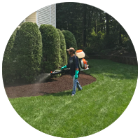 Greenstripe employee spraying a yard with organic mosquito control